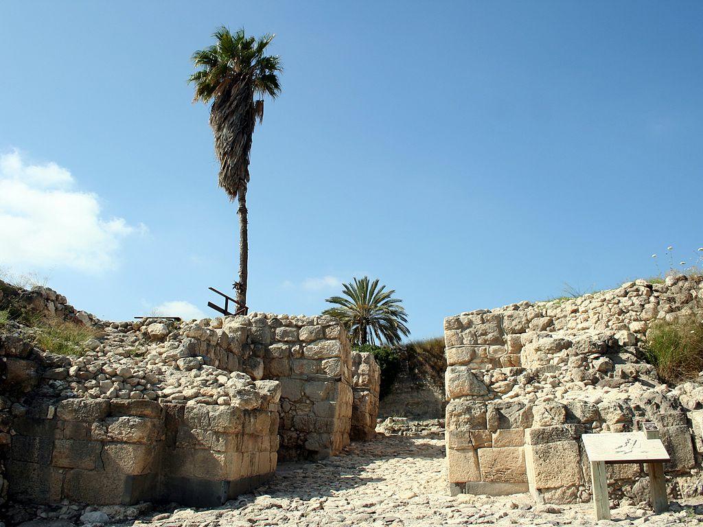 Изучение Мегиддо: путеводитель, который стоит иметь под рукой самостоятельным туристам