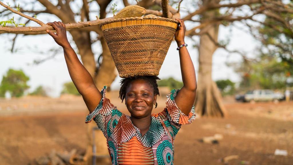 В Африке возведена Великая зеленая стена: это сделано, чтобы не допустить расширения пустыни Сахары