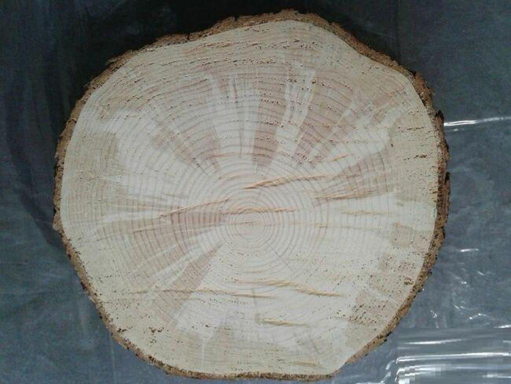 Нашла у мужа в мастерской спил дерева и решила сделать панно: оно отражает мою любовь к закатам и деревьям