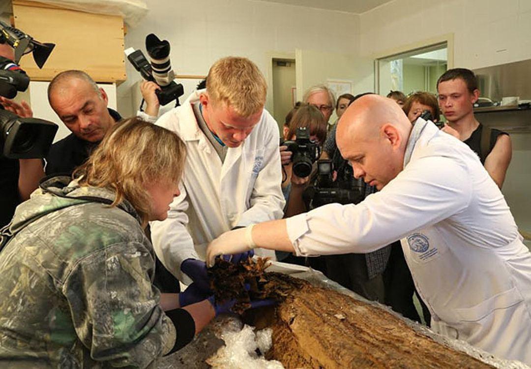 http://fb.ru/media/i/1/5/6/6/3/9/i/156639.jpg