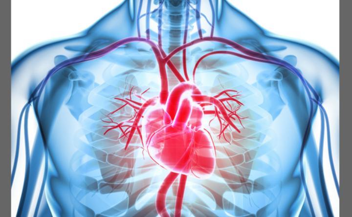 После выздоровления от коронавируса человека необходимо полностью обследовать: итальянский доктор предупредил о последствиях для сердца, легких и не только