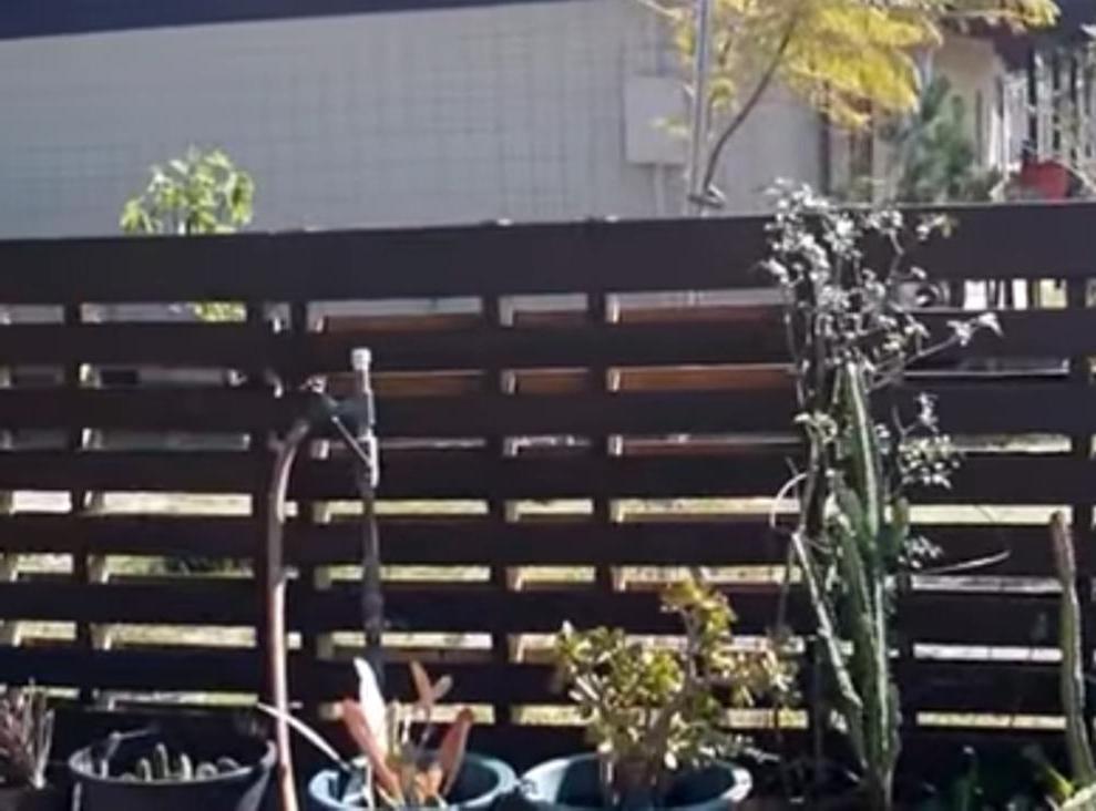 Использование деревянных поддонов в сельском хозяйстве: можно построить курятник или хранилище для компоста