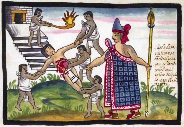 a glimpse into the life and culture of the aztec indians