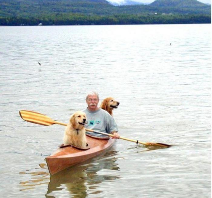 Трое в лодке, считая 2-ух собак: мужик выстроил каяк с сиденьями…