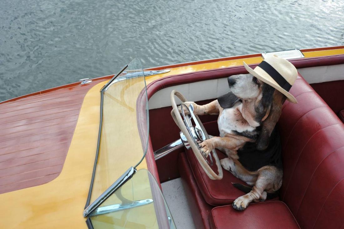 придумал троих в лодке сканворд