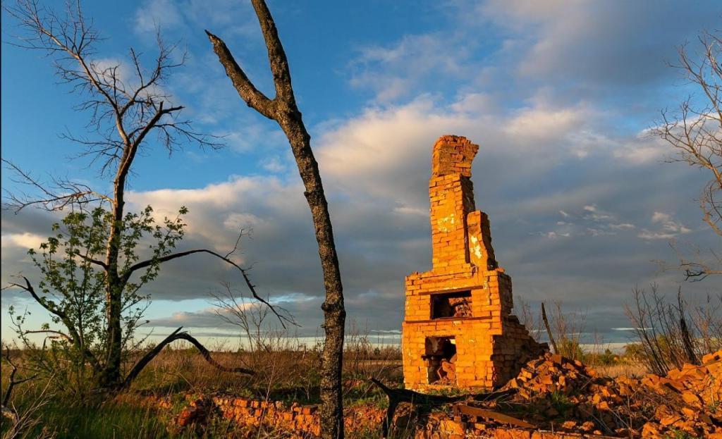 Как сегодня выглядит Полесский радиационный заповедник, появившийся после Чернобыльской аварии: фото Сергея Плыткевича