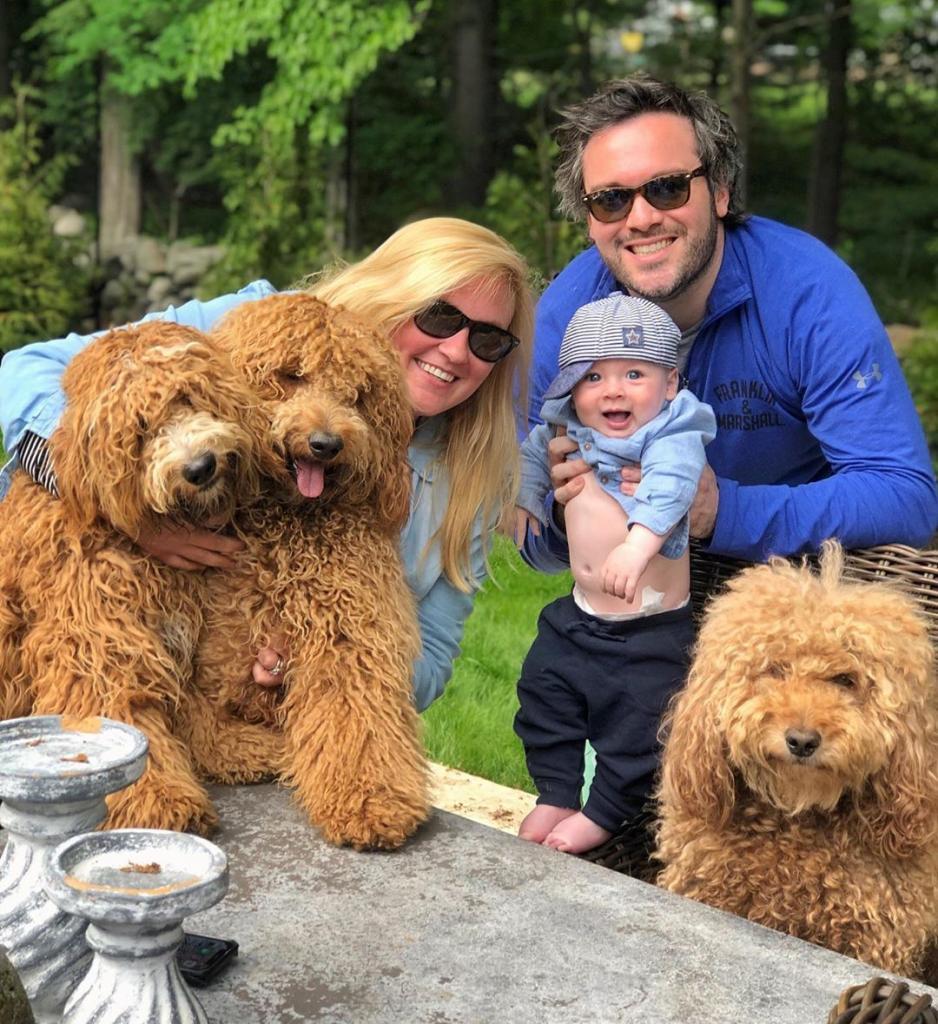 что всегда фото семьи с собакой пудель шерстяную нитку