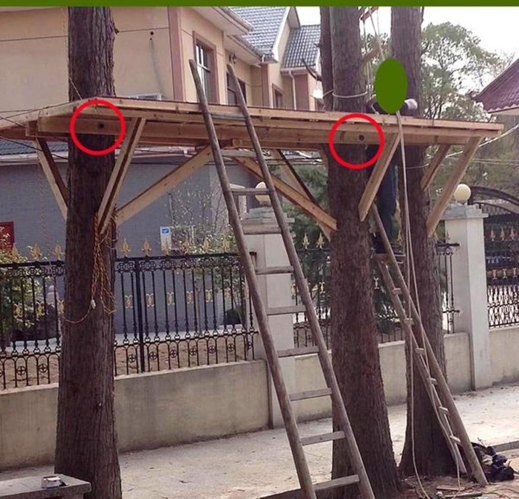 Осуществил детскую мечту. Мужчина построил дом на дереве и в подробностях описал процесс строительства