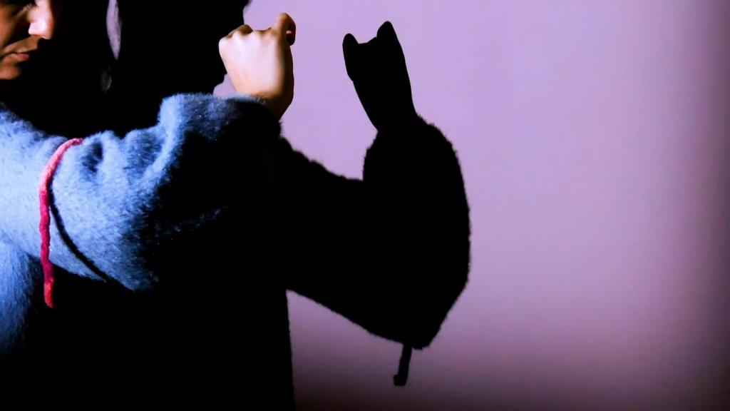 Дети в восторге от театра теней, и я научилась показывать разных животных