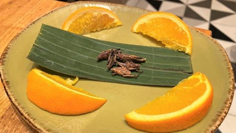 """Пончик-суши, зеленое молоко и чипсы-кузнечики: 10 самых странных продуктов и напитков в """"Диснейленде"""""""