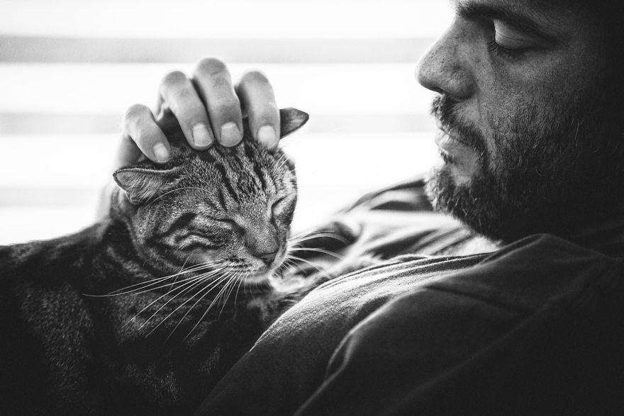 мужчины и кошки фото запросу санки