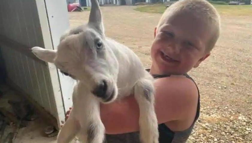 Злоумышленники украли с фермы козлят, но после трогательного поста в Facebook вернули их счастливому владельцу