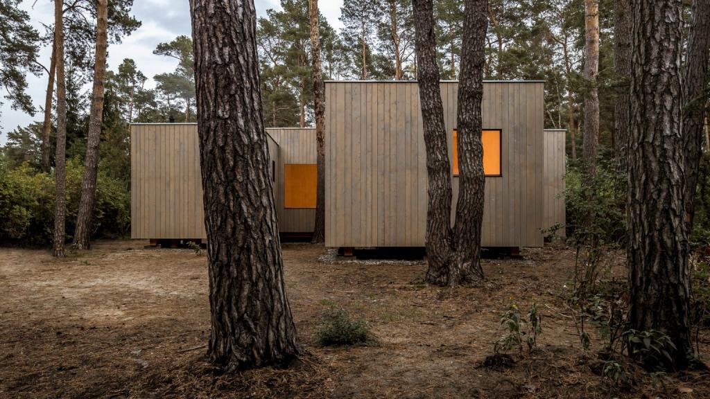 Архитектурная студия построила деревянный дом из 5 блоков, чтобы вписать его в расположение сосен в лесу: красиво и с заботой о природе