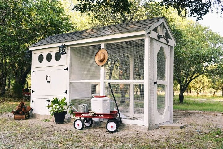 Наконец-то построили с мужем курятник мечты: кажется, птицы в восторге от нового дома