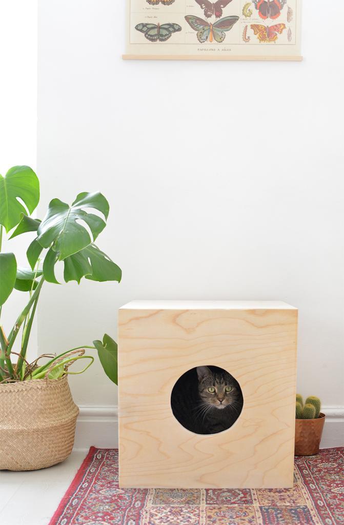 Из кусков фанеры я смастерила для кота уютный домик с мягким настилом: питомец с удовольствием в нем обжился