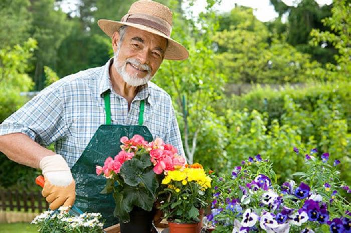 Эксперты назвали хобби, которое продлевает годы жизни: просто занимаемся садом и живем до глубокой старости 6