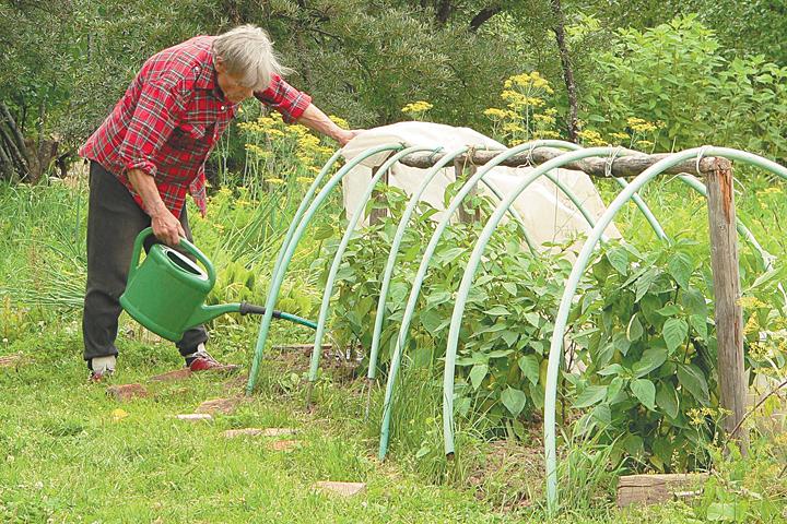 Эксперты назвали хобби, которое продлевает годы жизни: просто занимаемся садом и живем до глубокой старости
