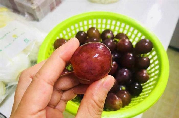 Когда покупаю виноград, пробую ягодку снизу грозди: способ еще меня не подводил Обсудить