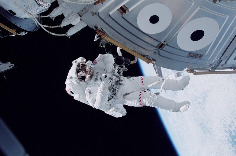 Один из близнецов год пробыл в космосе. Когда братья встретились, люди заметили внешние изменения