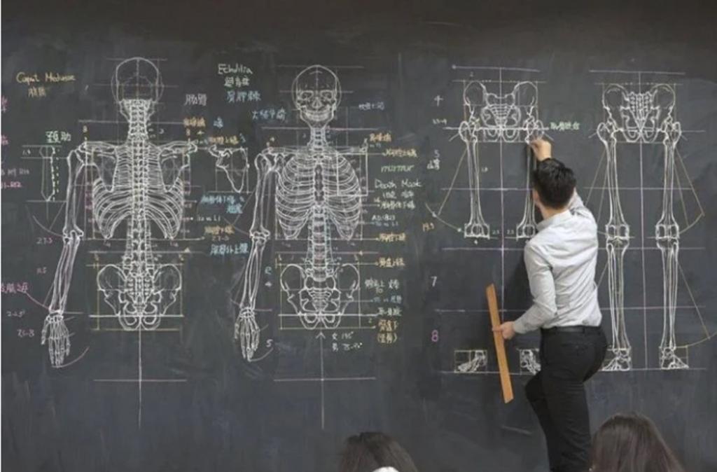 Учитель анатомии стал звездой Интернета из-за своих рисунков. Кажется, он выбрал не ту профессию