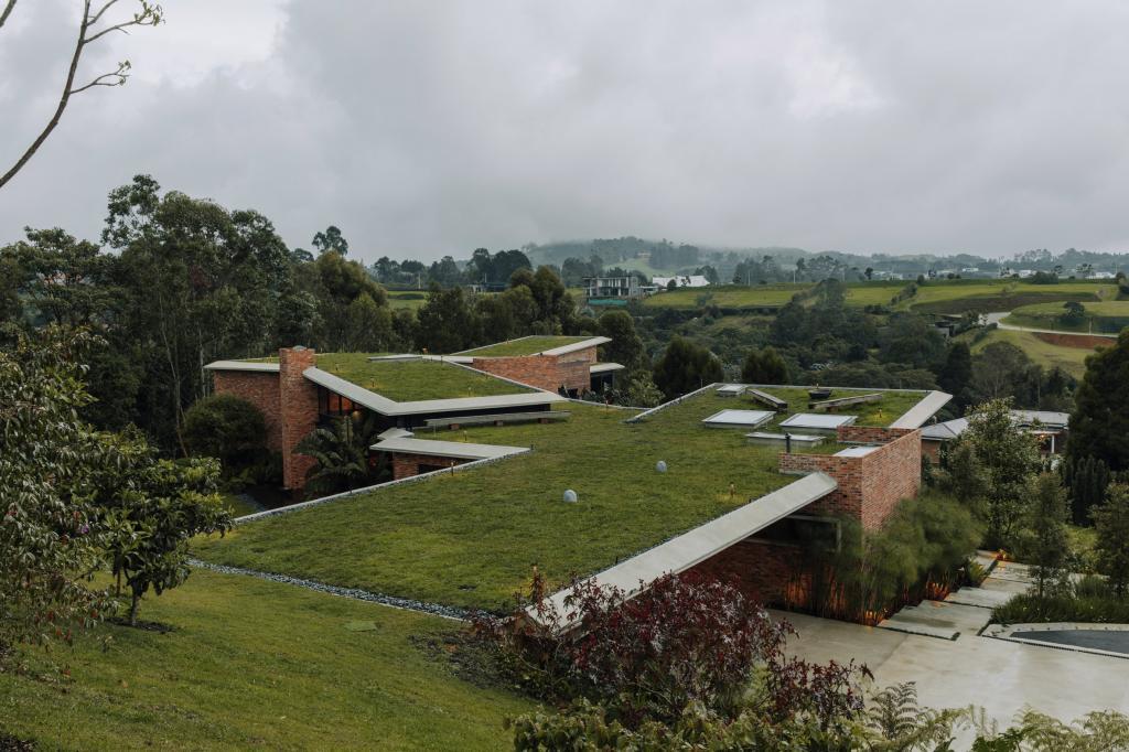 Живые зеленые крыши домов сливаются с холмом и лесом в Колумбии