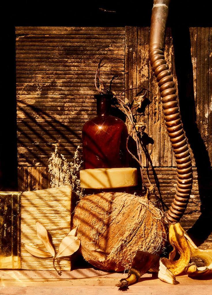 Креатив в карантин: фотограф в пандемию стала творить натюрморты из мусора и ненужных вещей (фото)