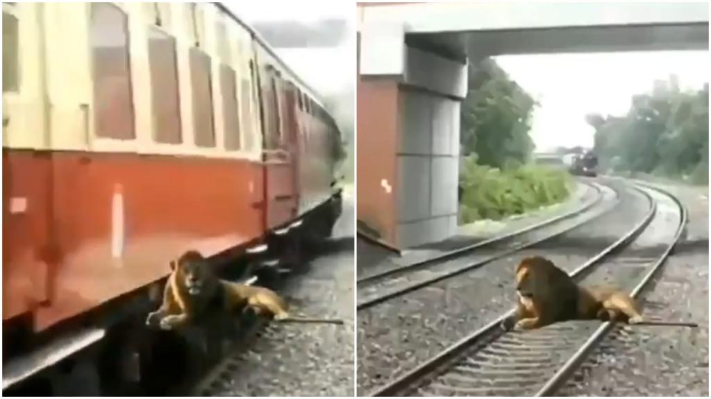 Индия: полицейские выставили забавное видео, чтобы люди были бдительными в отношении фейковых новостей