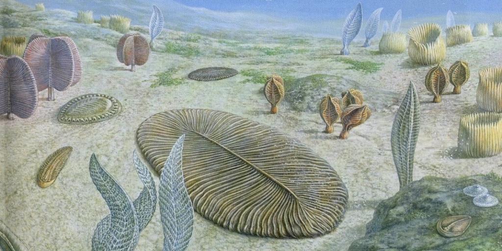 Всего 6 лет назад мы узнали, что многоклеточная жизнь существовала еще 2 млрд лет назад и не вписывалась ни в одну нашу эволюционную хронологию