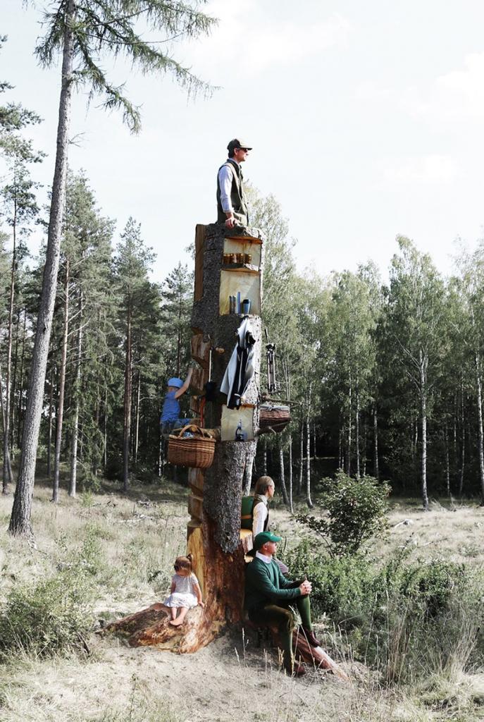 Полочки и крючки для одежды: архитекторы вырезали наблюдательную вышку для скаутов прямо в стволе засохшего дерева