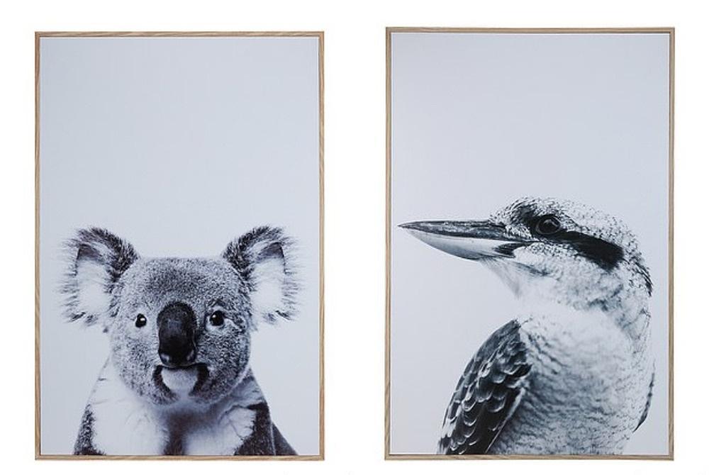"""""""Настоящий австралиец!"""" Жена попросила мужа повесить две картины: результат ее рассмешил"""