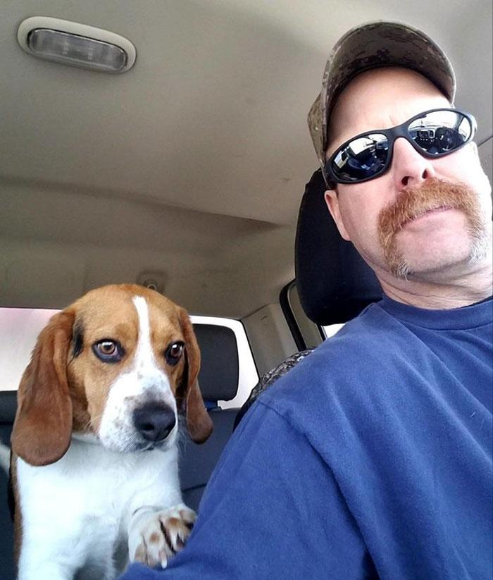 Мужчина забрал собаку из приюта, а по дороге она показала, как она ему признательна, прижавшись головой