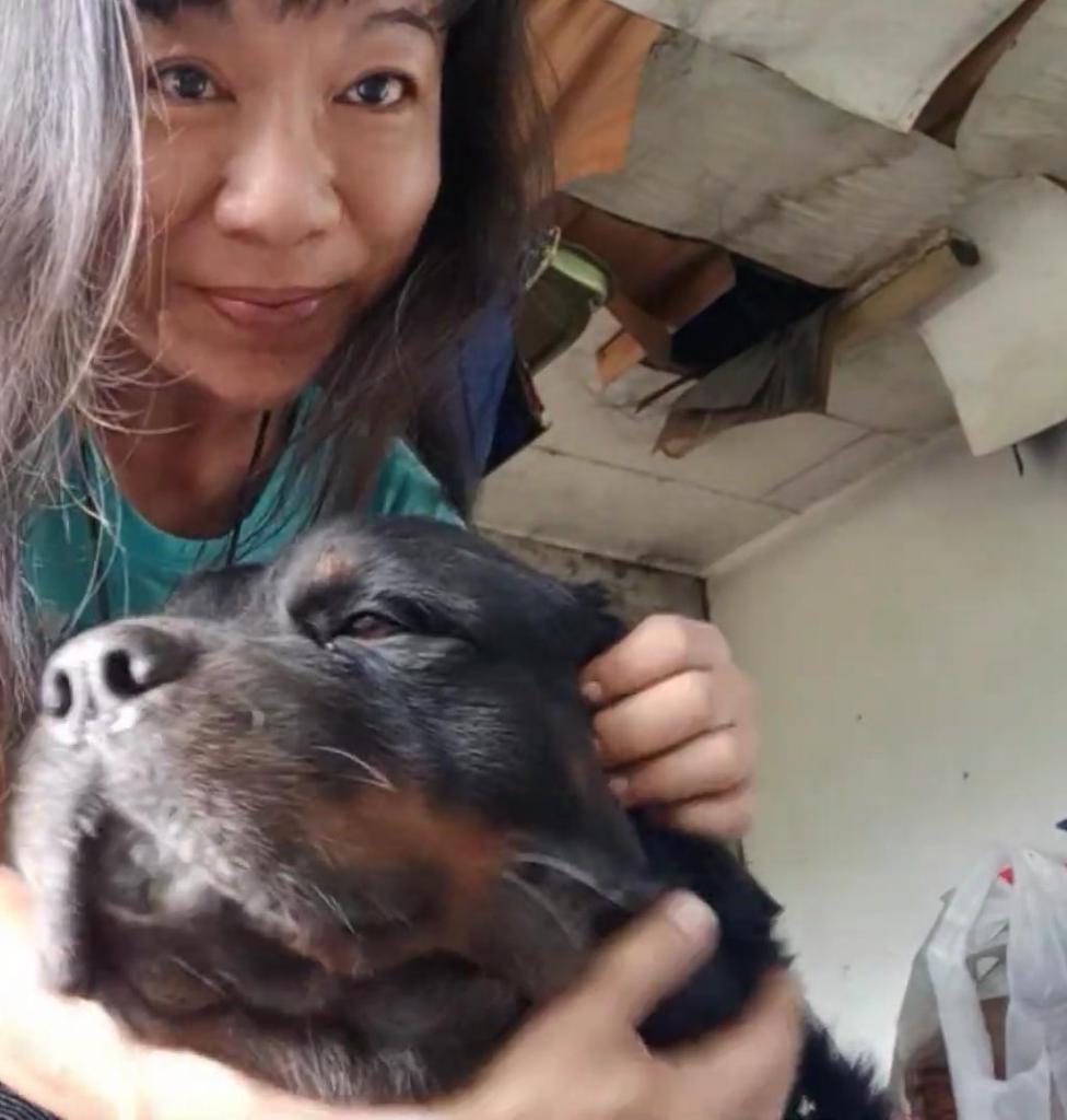Только машина, любимая собака и дорога: 53-летняя женщина из Малайзии проживает жизнь, о которой мы только мечтаем