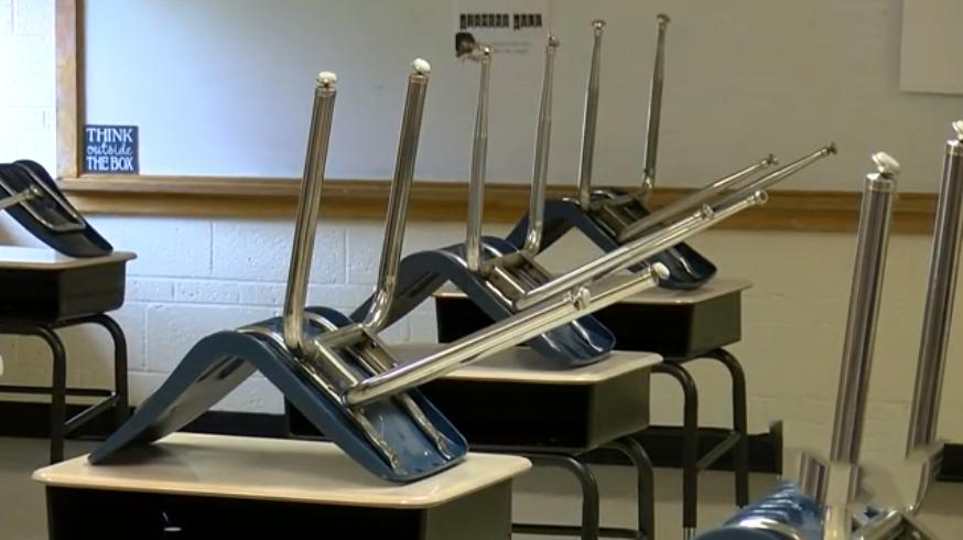 «Это меня веселит!»: во время онлайн-занятий учитель рассаживает за пустующие парты необычных «учеников»