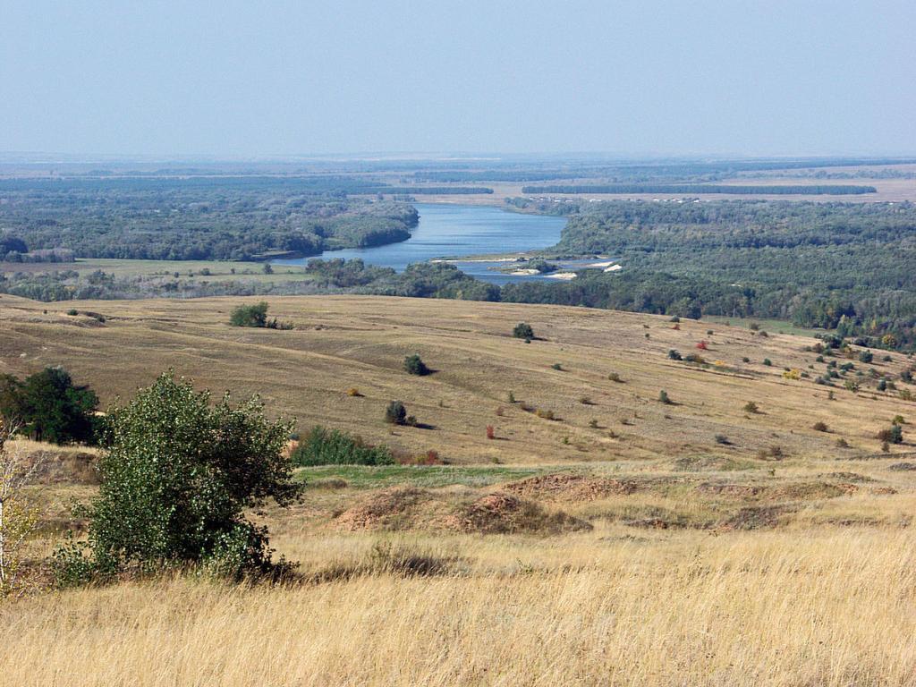 Севастополь и Алтай: названы регионы России, в которых лучше всего защищена дикая природа
