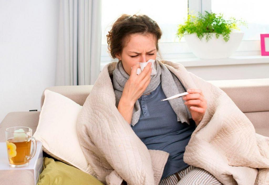 Пробиотики помогают нашей иммунной системе справиться с простудой и гриппом