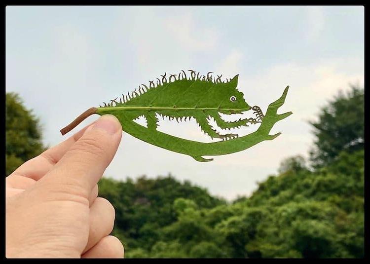 Японский художник создает невероятно замысловатые произведения искусства из листьев деревьев