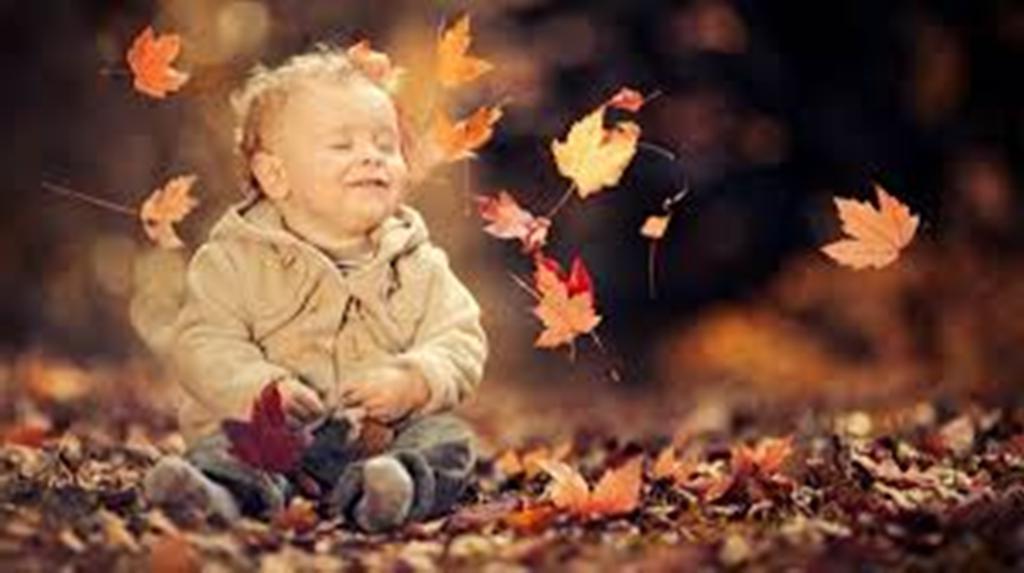 Осенние дети. Особенности рожденных осенью, про которые можно рассказывать детям, как сказку на ночь