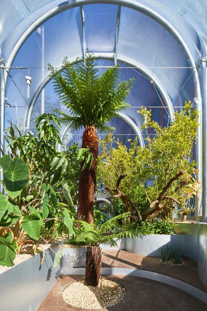 """Чтобы подчеркнуть повышение температуры в Великобритании, в Лондоне построили теплицу с тропическими растениями. Такие """"напоминалки"""" будут не лишними в любой точке планеты"""