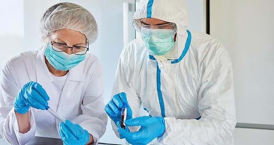 В ходе экспериментов ученые выделили биомолекулу, которая полностью блокирует коронавирус