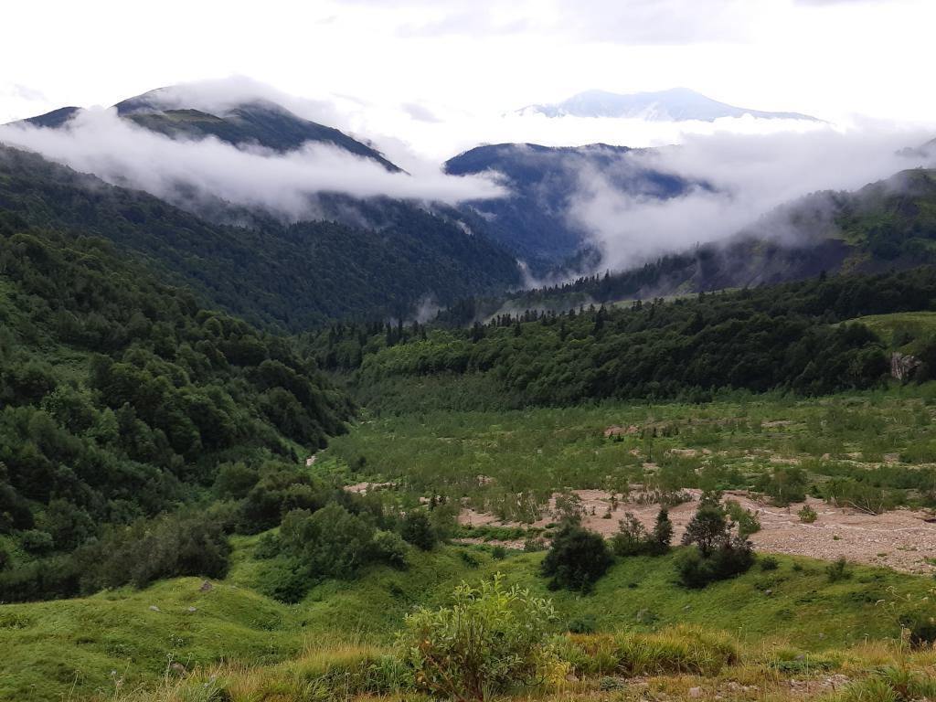 """В сочинском заповеднике обнаружили рожь Куприянова: это """"предок"""" современной ржи, существовавший в древние времена"""