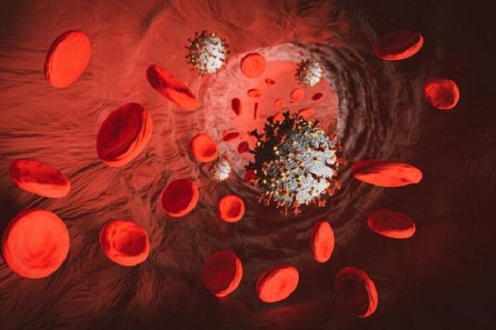 Ученые объяснили, в чем главная «хитрость» коронавируса