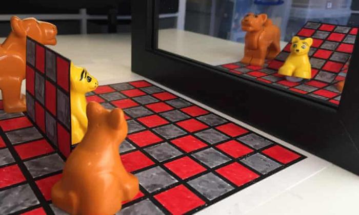 Почему мы видим только отражение желтой игрушки, но не видим ее саму: оптическая загадка