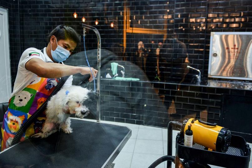 Саудовская Аравия: владельцы собак теперь могут выпить чашечку кофе вместе со своими питомцами в новом кафе