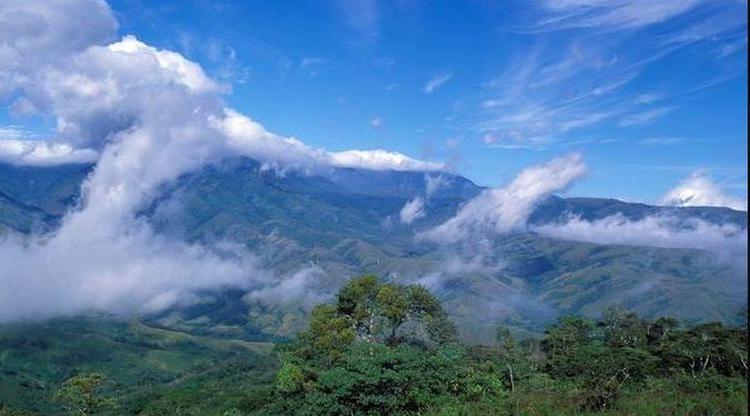 На протяжении сотен лет коренные народы разных стран предупреждали, что разрушениебаланса среды обитания видов ведет к смертельным болезням. Готов ли мир теперь слушать?