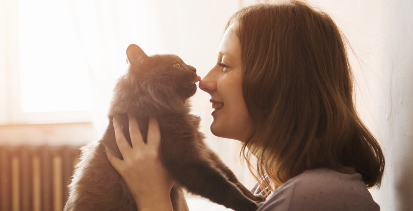 Доказано наукой: кошки распознают человеческое поведение и подражают ему