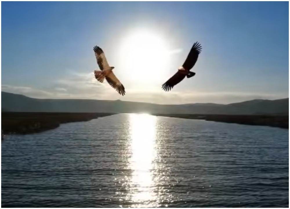 Древняя легенда об орле и ястребе: эта история способна объяснить чистый и подлинный смысл любви