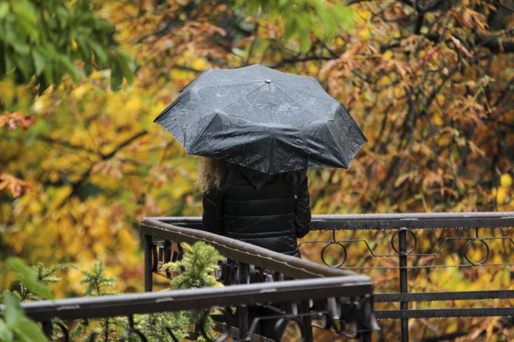 """В Гидрометцентре пообещали настоящие погодные """"чудеса"""" для европейской части России и рассказали о том, когда наступят осенние холода (ждать осталось недолго)"""