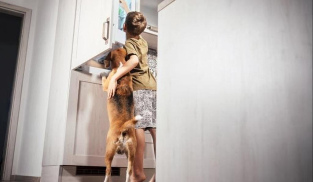 Девушка сказала своему возлюбленному, что не хочет слишком часто видеть его детей в своем доме: его ответ поставил ее в тупик