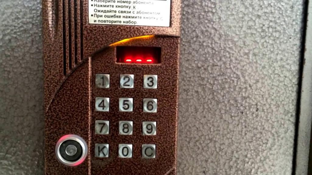 """22-летняя жительница Петербурга вживила банковскую карту и ключ от домофона себе под кожу и рассказала об этом в """"Твиттере"""""""