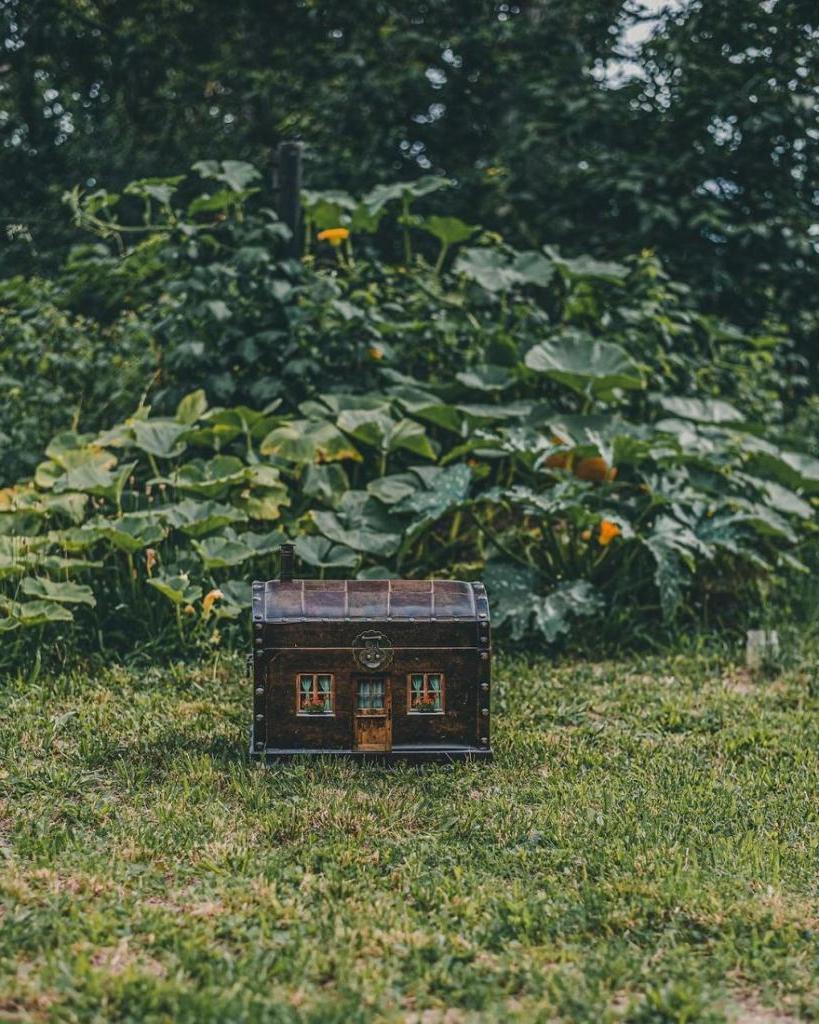 В поленьях, под грибом, в тыкве: девушка редактирует самые обычные снимки, вставляя в них крошечные домики (во многие хочется переехать жить)